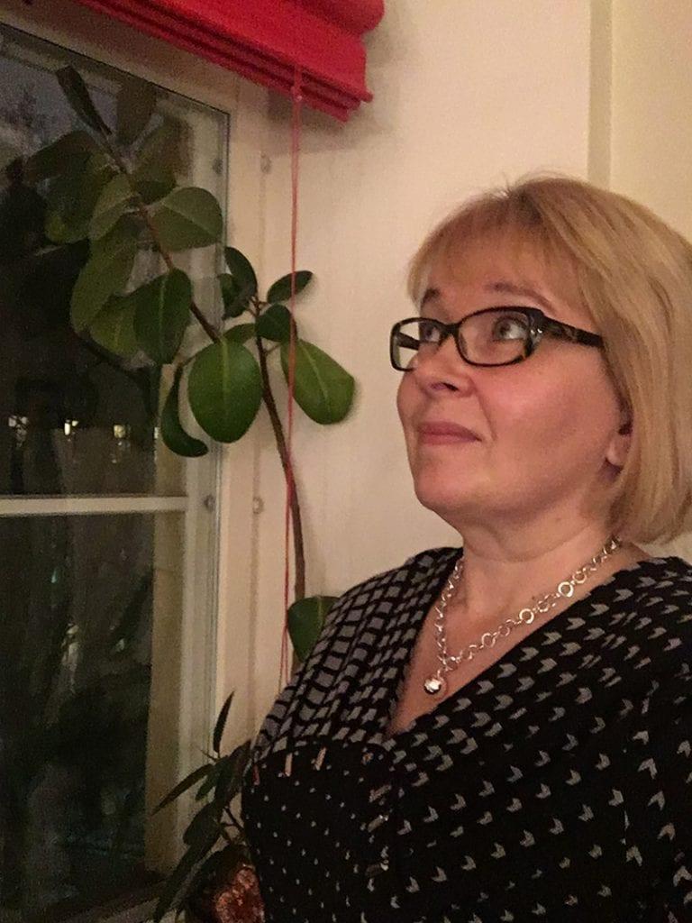 Suomesta tuli ratkaisu Itä-Ukrainaan – tosin vain roolipelissä